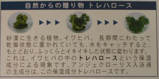 界面活性剤の入っていないバブルバス【トレハロース 入浴剤】ジョリーブ