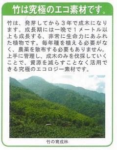 竹は究極のエコ素材です。