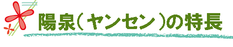 陽泉(ヤンセン)の特長