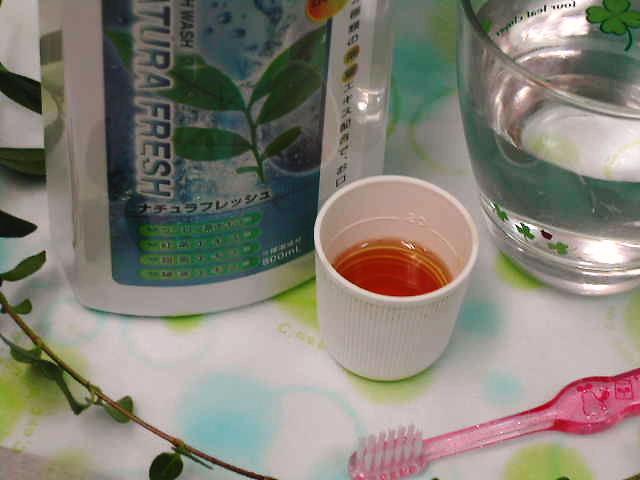 4種の茶葉で、歯垢とお口のニオイのもとを除去【ナチュラフレッシュ(マウスウォッシュ)】